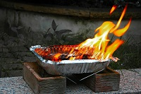3 x Disposable BBQ