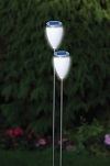 2 Pack Tulip Solar LIght